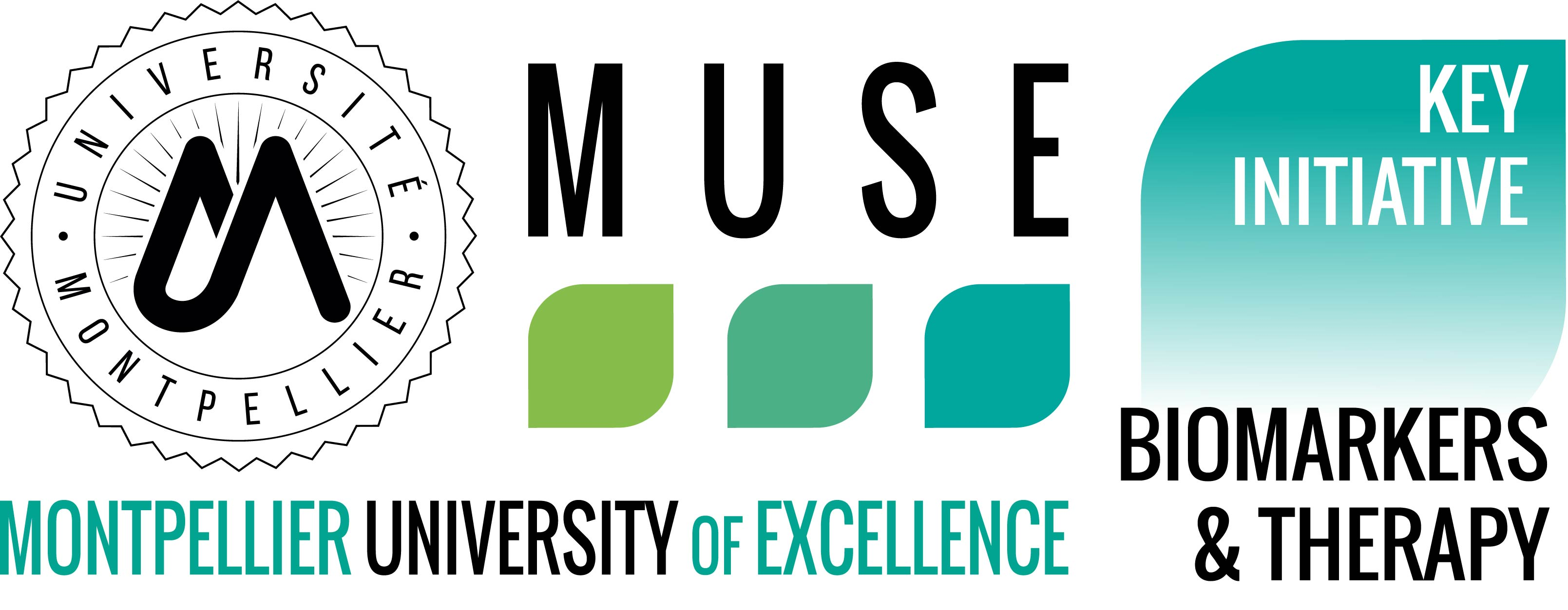 https://muse.edu.umontpellier.fr/files/2019/01/Logo_MUSE_KIM_BT_Original.jpg